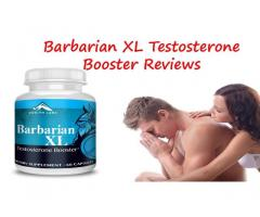 What Are The Main Ingredients Used In  Barbarian Xl?
