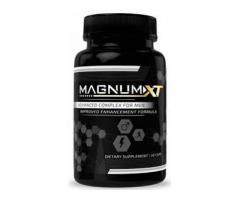 Where to buy Magnum XT?