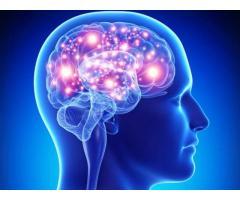 https://healthhaltusa.wordpress.com/2018/04/14/sg-11-brain/