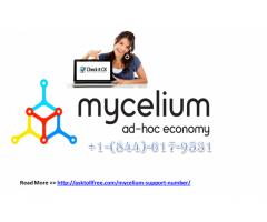 Mycelium Number  +1-844-(617)-9531