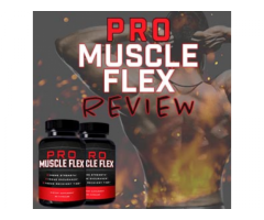 https://fitnesssoultions.com/pro-muscle-flex/