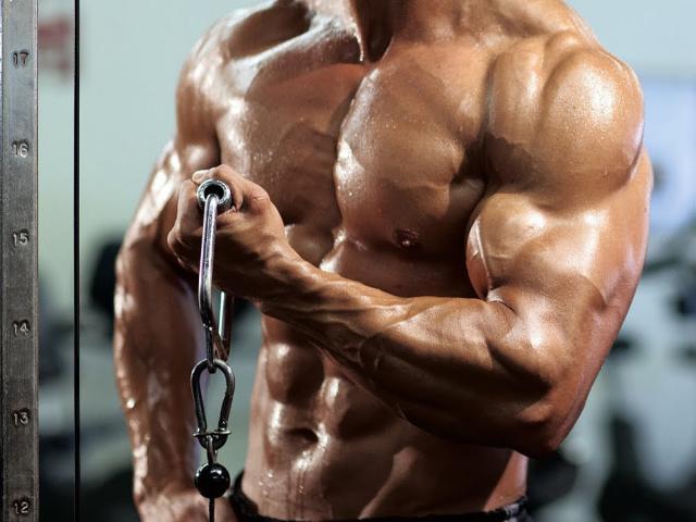 http://www.supplement4advisors.com/supreme-vigor-testosterone-booster/